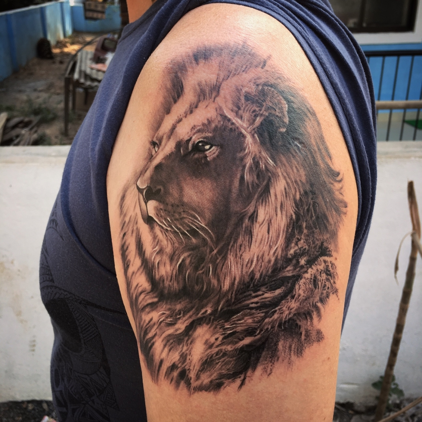 realistic lion tattoo-animal tattoos